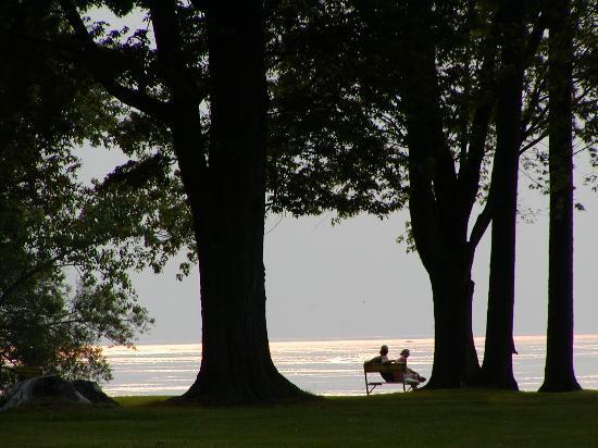 Foto de Buffalo
