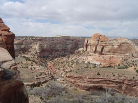 Grand Staircase Escalante National Monument: This drive was unbelievable.  The views were endless.