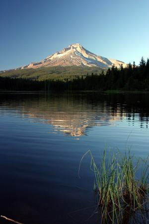 Mount Hood: trillium lake