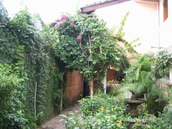 Casa San Francisco: Garden leading to rooms