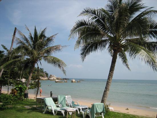 Samui Park Resort : Beach