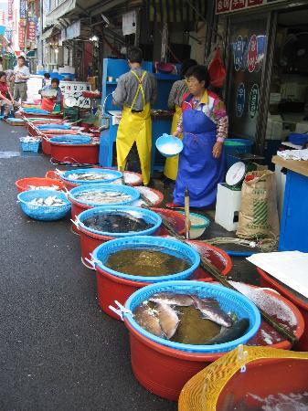 Μπουσάν, Νότια Κορέα: Fish Market