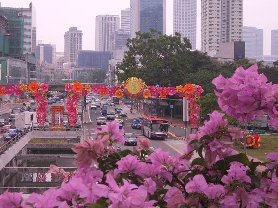 الحي الصيني: Colorful flowers line streets of Chinatown