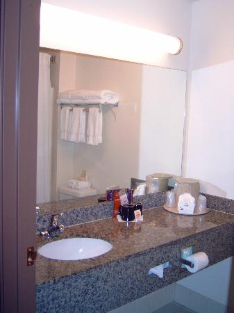 Comfort Suites Vancouver: For the ladies, a big counter and mirror in the bathoom