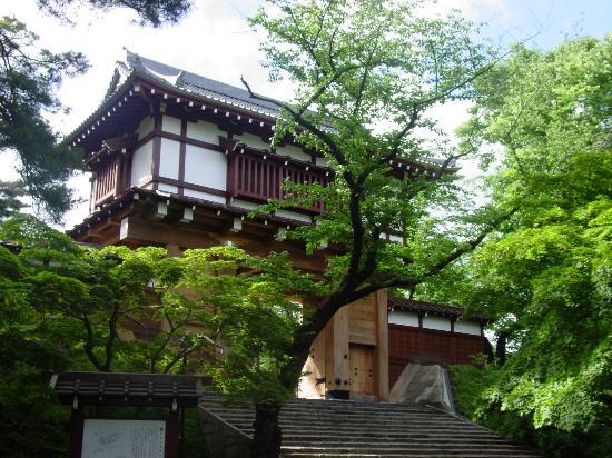 秋田市照片
