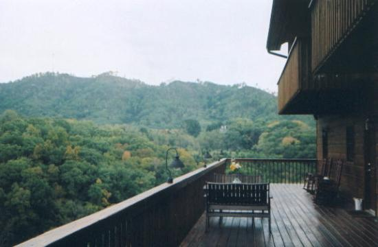 Berry Springs Lodge: View from deck
