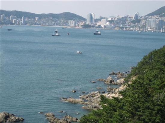 Busan Foto