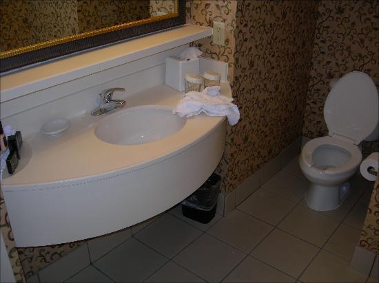 Embassy Suites by Hilton Nashville at Vanderbilt : Sink and toilet