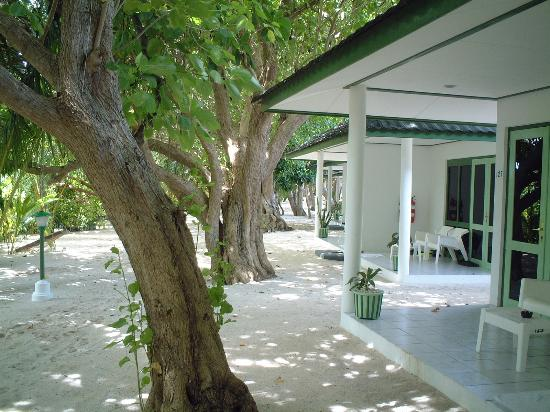 Lily Beach Resort & Spa: Standard Rooms - Lily Beach