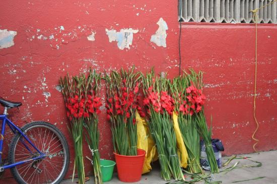 Mercado de Artesanías de Oaxaca