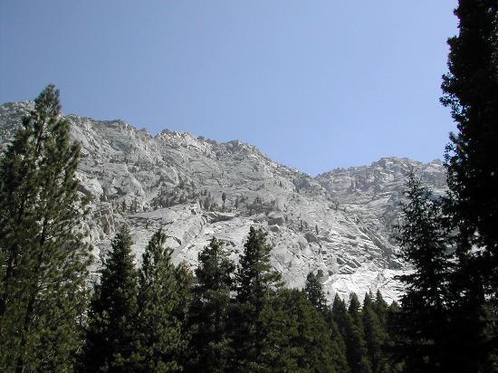 Lone Pine Φωτογραφία