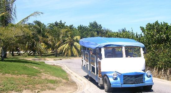 Laguna Mar: Resort Shuttle