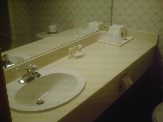 Quality Inn & Suites Garden of the Gulf : Bathroom