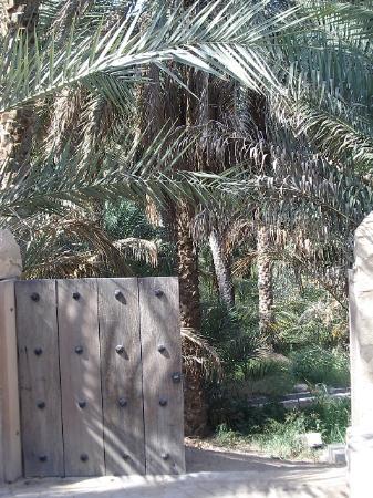 Hilton Al Ain: Inside the Oasis of Al Ain, UAE
