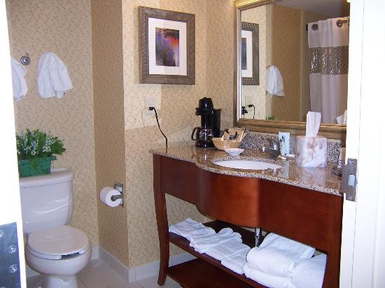 Hampton Inn Farmville : bathroom