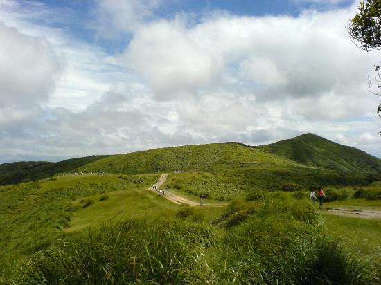 Yangmingshan-Nationalpark Foto