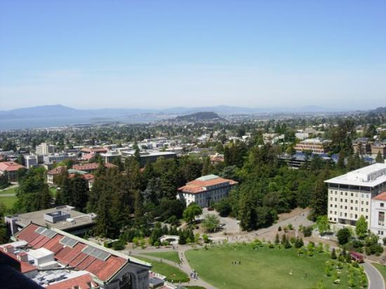Berkeley, Californië: Here is one view from the tower.