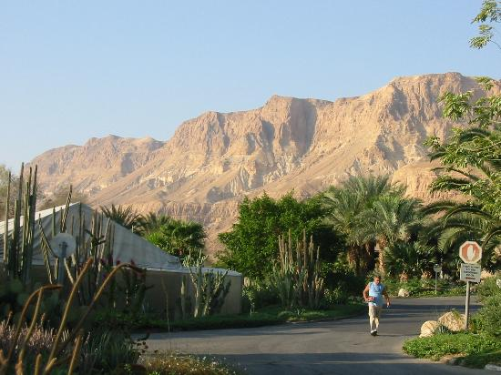 Ein Gedi, Israele: View from the kibbutz