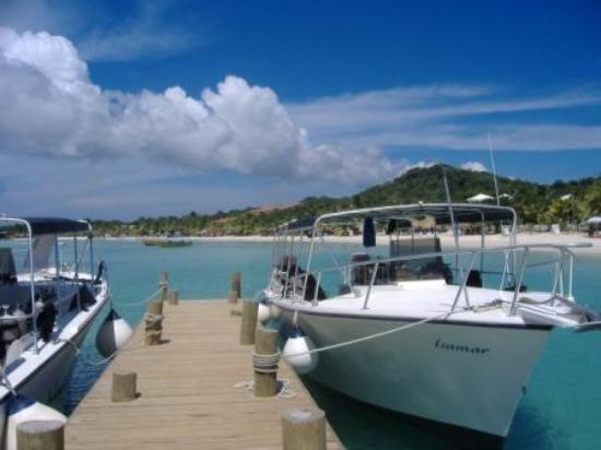 Anthony's Key Resort: Dive boats at AKR