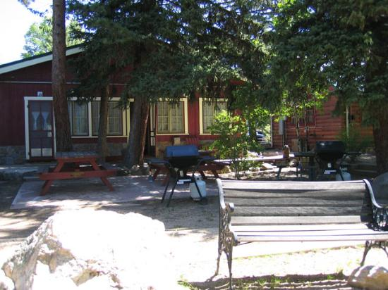 Swiftcurrent Lodge On The River Photo