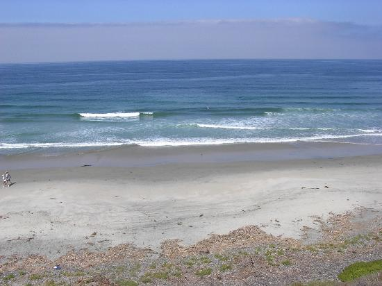 South Carlsbad State Beach Foto