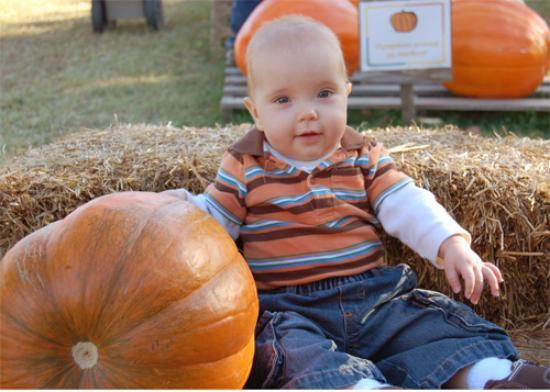 Pumpkin Hollow Photo