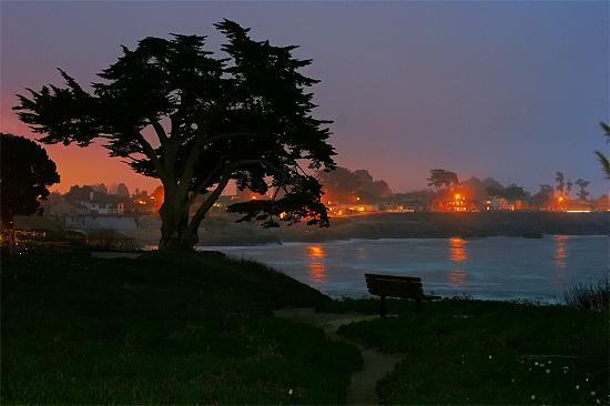 Bilde fra Santa Cruz