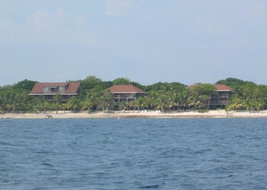 Deep Blue Resort Utila: Photo of Deep Blue. Central building is the restaurant/bar, other two buildings are guest rooms