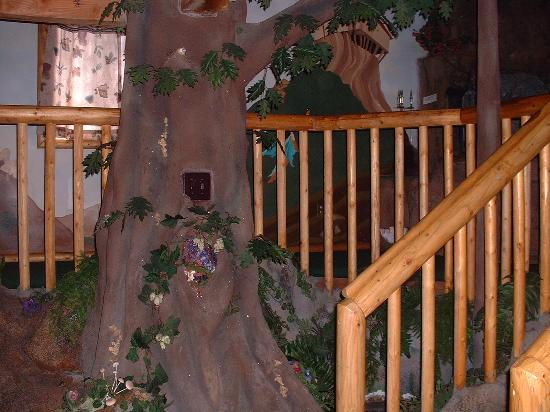 Castle Wood Theme Cottages : tree with a bid nest in the hollow- near the stairs