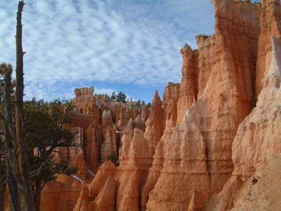 Parque Nacional Bryce Canyon, UT: Magnificent View