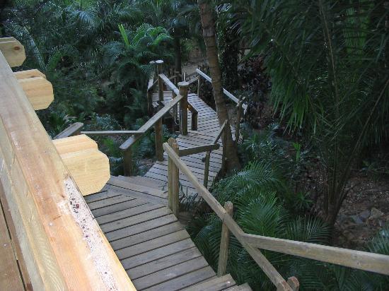 Anthony's Key Resort: stairs