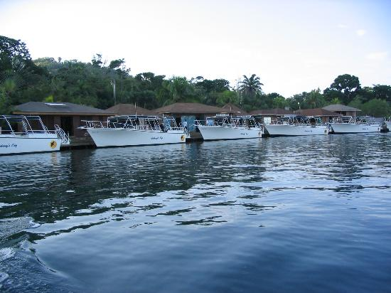 Anthony's Key Resort: dive boats