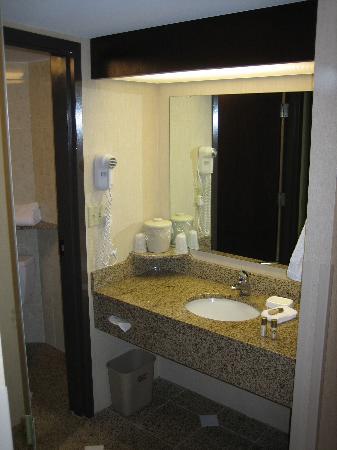 Drury Inn & Suites Detroit Troy: Room 464 Bathroom