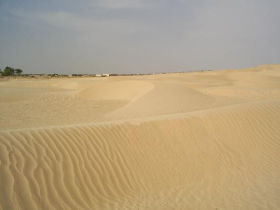 Hotel Les Citronniers: Sahara Desert