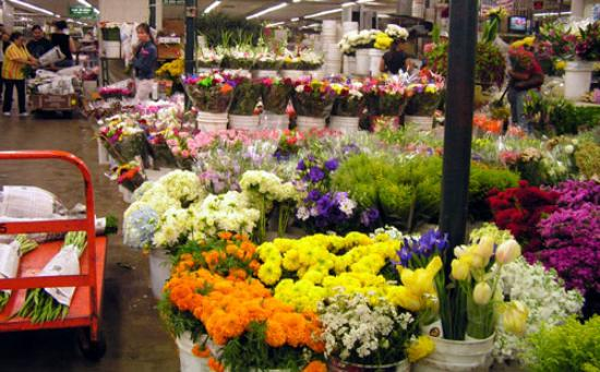 Flower market los angeles 2018 all you need to know before you all photos 59 mightylinksfo