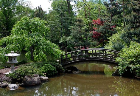 Anderson Japanese Gardens: Main Pond Bridge