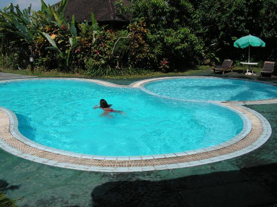piscine photo de puri padi hotel ubud tripadvisor. Black Bedroom Furniture Sets. Home Design Ideas