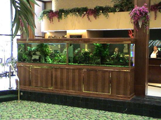 MCM Elegante Hotel: Lobby fish tank