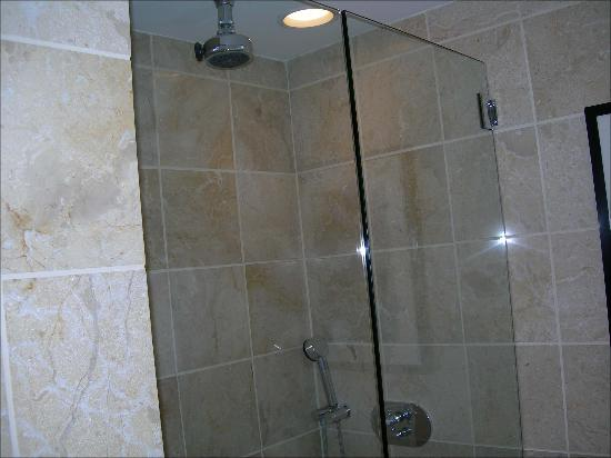 Hotel Teatro : Outstanding shower experience with hand held and rain shower heads