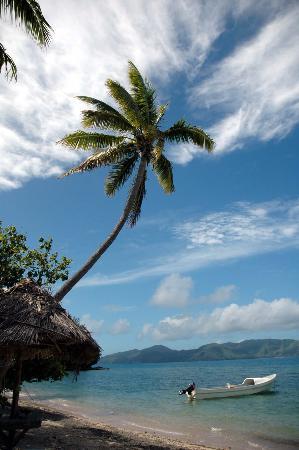 Isola di Kadavu, Figi: Tiliva Splendor