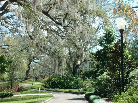Orlando Harry P Leu Gardens Tripadvisor