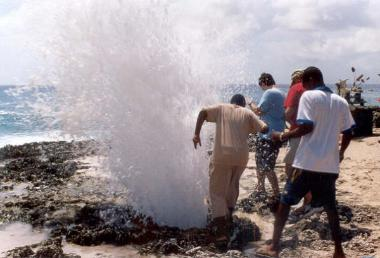 Blow hole spitting water