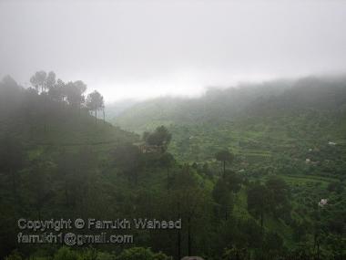 A green valley inside margallah hills