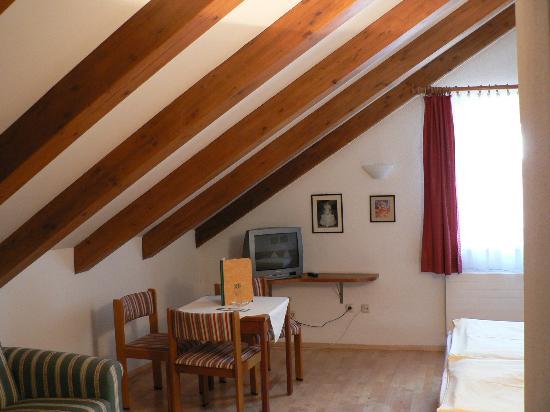 Hotel Weißes Kreuz: Room view #1