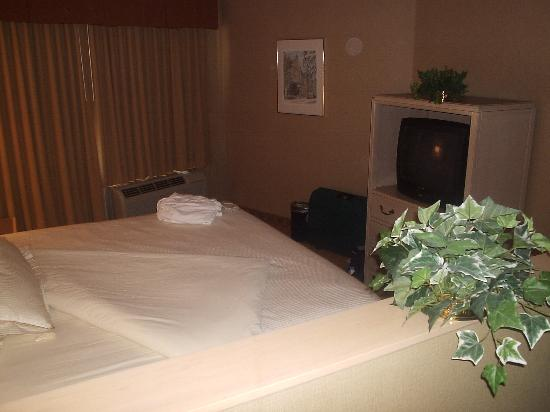 Inn at Saint Mary's Hotel & Suites: And a second TV to watch from bed!