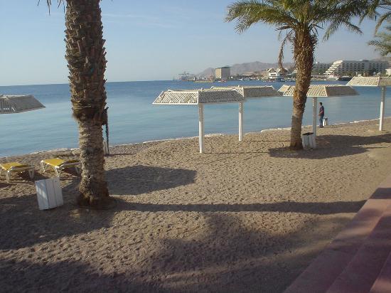 Dan Panorama Eilat Beach Scene At The