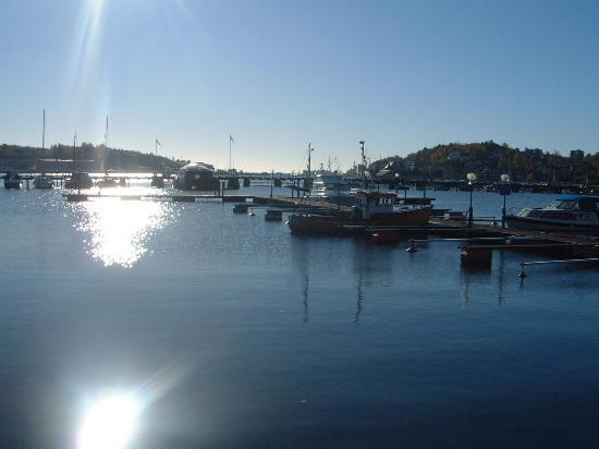 Sandefjord, Norwegia: The harbour