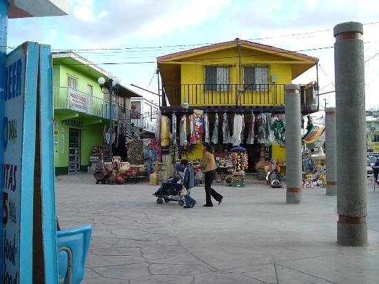 Avenida Revolucion Photo