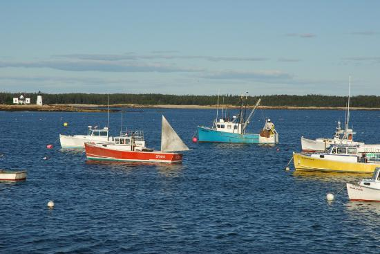Bar Harbor, ME : Schoodic Peninsula