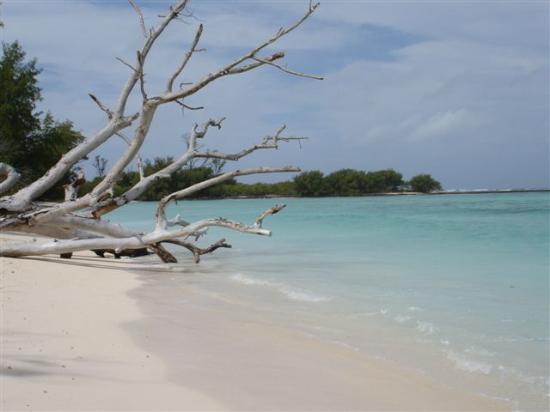 Desroches Island: Beach by our room